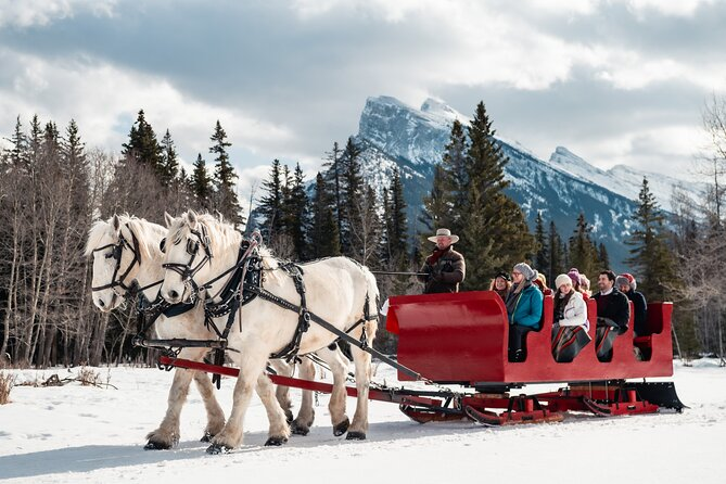 Add the perfect rustic touch to your winter Alberta experience with a sleigh ride in Banff. Ride with your family or friends in a horse-drawn sleigh through meadows and enjoy spectacular views of the Canadian Rockies.