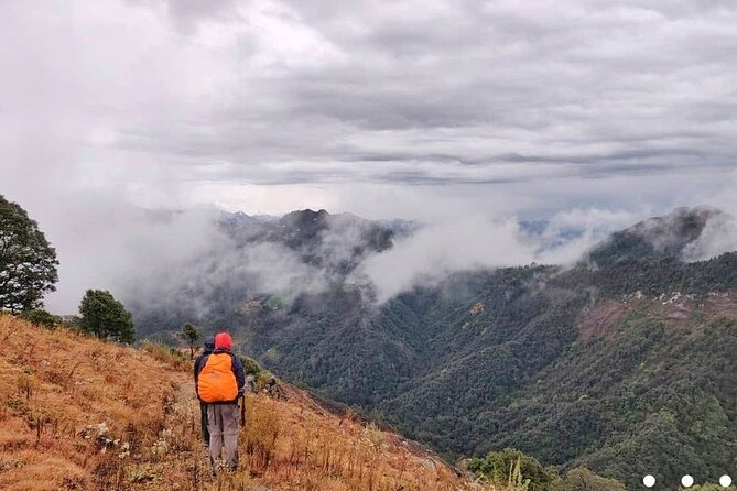 Benog is a beautiful Bird sanctuary located up here in Mussoorie - the queen of the hills. <br>A perfect place for Birdlovers, nature enthusiasts & people looking for rejuvenation & Recreation.<br>Full of flora and fauna. <br>You won't want to miss it, when you are in mussoorie. <br><br>