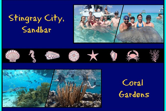 Visit Stingray City — one of the Cayman Islands' top attractions — on this 2-3 hour morning or afternoon tour. Accessible only by boat or other watercraft, Stingray City is home to an abundance of free-swimming stingrays, who glide around the clear, shallow water. You'll also visit either Coral Gardens or Barrier Reef to snorkel. This family-friendly experience includes round-trip hotel transportation on Grand Cayman and the boat ride to and from Stingray City.