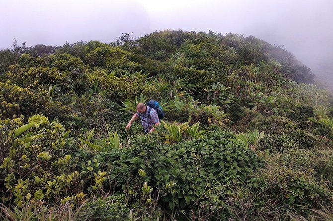 Hiking & trekking in Knuckles, Kandy, Sri Lanka