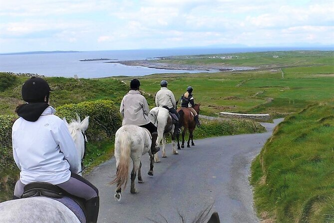 Experience the beautiful County Clare countryside from horseback with this family owned stables. Beautiful views of Slieve Eva, the magnificent Connemara mountain ranges, the iconic Cliffs of Moher and the Aran Islands make this trek is one of the most popular!. <br>Whether it's a fun time or an exciting and challenging hack you're looking for we cater for all riders, from young to old with all different levels of experience. <br>Ride some of the best trails the West of Ireland and Wild Atlantic Way have to offer. Each of our trails is unique. We trek through the woodlands, up the hills of Slieve Elva and along peaceful winding green roads into the world-renowned Burren region. <br>Trek at a leisurely pace with gentle canters optional. Suitable for beginner and advanced riders.