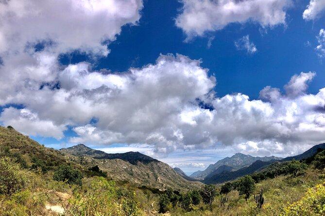 Sierra de la Laguna Biosphere Reserve Hike, Todos Santos, MEXICO