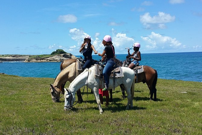 Nothing better than enjoying a horseback ride, in St Lucia near the ocean with beautiful scenery. That is something you will want to do, also if you haven't, there's nothing wrong in experiencing it. It's very easy and horses are very friendly like us St Lucians. This also allows you to explore a different part of the island and go swimming with the horses at a beautiful beach. You will be pickup up at a scheduled time and to the stable to start off your tour.