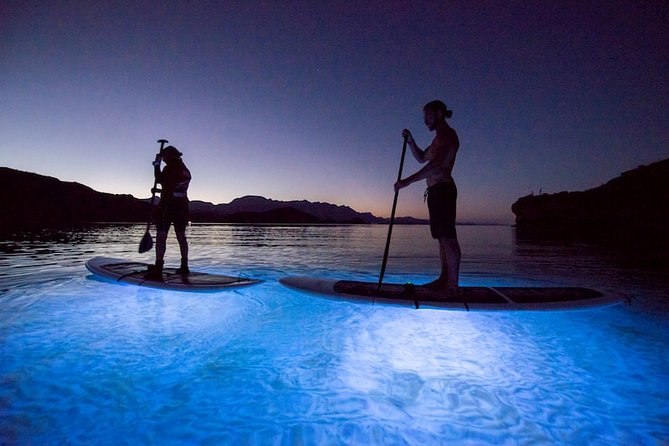 Among the most exciting things to do in La Paz, Mexico is to take a trip into the night on top a paddle board in the Sea of Cortez. While night time paddle boarding might seem a bit nerve-wracking, the use of LED lights makes it an incredibly unique experience and one of the best activities that the destination offers.<br><br>We will visit El Tesoro beach, home of different species of fish, stingrays and turtles. While there are plenty tours and activities that take you out on the Sea of Cortez, none are quite like LED Paddle Boarding, which gives adventurers a different perspective with which to enjoy the massive biodiversity of the underwater world in La Paz, Mexico. <br><br>Almost nowhere else in the world you can find the serene tranquility, biodiversity and adventure that La Paz, Mexico, has to offer.<br><br>Whether you are traveling with family, friends, your significant other or yourself, you will find that Night Paddle Boarding will create memories for a lifetime!<br><br>