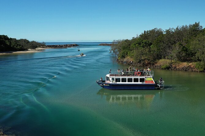 Take a 2 hour rainforest eco cruise along the Brunswick River in Cape Byron Marine Park for a chance to view birds, fish, and other native wildlife and marine life in their natural environment. Listen to commentary from a river guide, and enjoy provided coffee, tea, and snacks on board for a relaxing and pleasant experience.