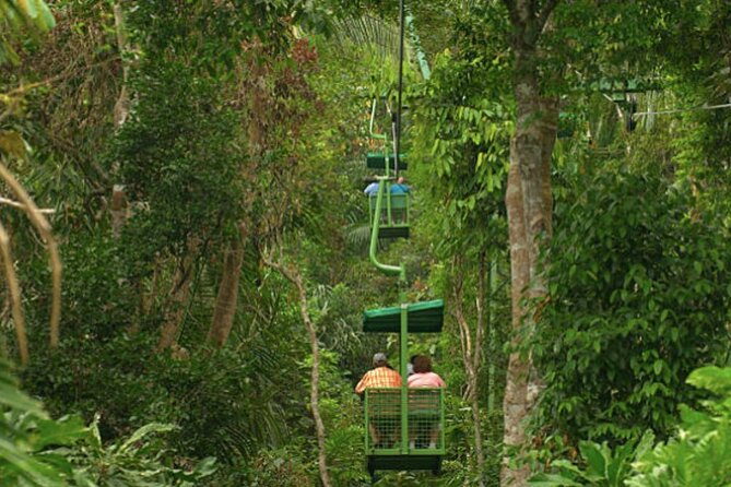 This tour offers an amazing day combo tour of our famous aerial trams that ascend 280 feet above the white-faced capuchin monkeys, with the forest Miraflores Visitor Centre showing the famous Panama Canal.  A sandwich, fruit, and water are included.