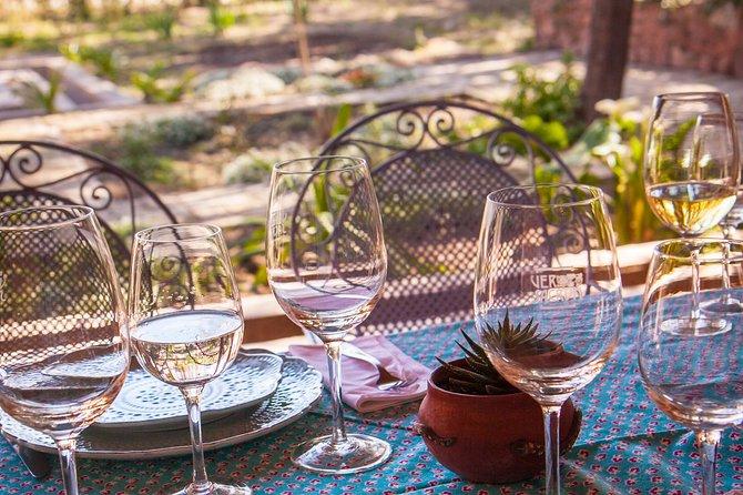 Mendoza entre viñedos y su cultura gaucha, Mendoza, ARGENTINA