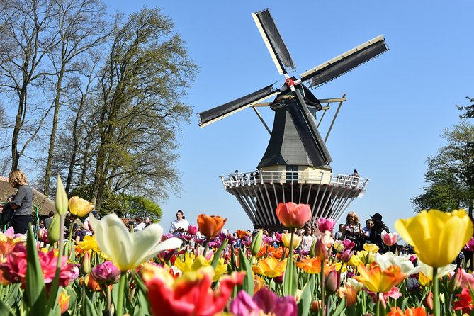 Enjoy hassle-free and efficient transportation from central Amsterdam to Keukenhof gardens in a air-conditioned coach at a time that suits you best. <br><br>The buses to Keukenhof Gardens depart daily from the attraction THIS IS HOLLAND, opposite of Amsterdam Central Station. <br><br>You will arrive after a short ride from Amsterdam in the bulb flower area around Lisse. Depending on the season, you will see a landscape with colourful bulb flower carpets in almost any colour you can imagine. Upon arrival at Keukenhof Gardens, skip the long lines and explore the floral displays of the spring garden at your own pace<br><br>Marvel at up to 7 million bulbs in bloom, and see vibrant flower beds and fragrant floral displays. Enjoy the Keukenhof Gardens at your leisure, and benefit from frequent departures with guaranteed seating on a luxury coach back to Amsterdam<br>