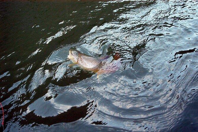 Rentals: Fishing Raft with Trailer - 1 Day, Buena Vista, CO, ESTADOS UNIDOS