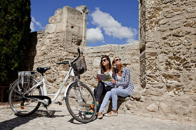 Thanks to this tour you will discover Provence like no others during a 4-hour excursion. Discovering Provence on an e-bike allows you to enjoy the amazing landscapes and smell all the flavors of this area. You will be guide by a very detailed road-book where you will find all the quiet routes and all the information you need to know during your trip. During this full day excursion in Provence, you will cross all the main touristic sites around St Rémy de Provence. The entrance to the Carrière de Lumières in Les Baux de Provence (the most popular attractions in Provence) is included in the price.