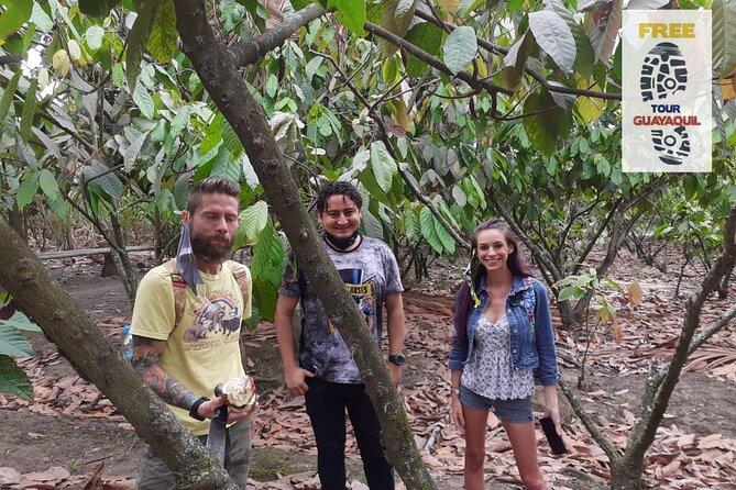 Tour Chocolate y Cacao - Experiencia en Hacienda Agroturistica, Guayaquil, Equador
