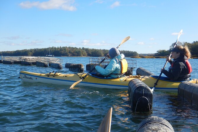 Oyster Farm & Tasting Sea Kayak Tour in Casco Bay, Portland, ME, ESTADOS UNIDOS