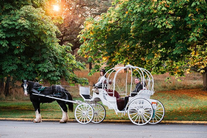 MÁS FOTOS, 45-Minute Beacon Hill Park Carriage Tour