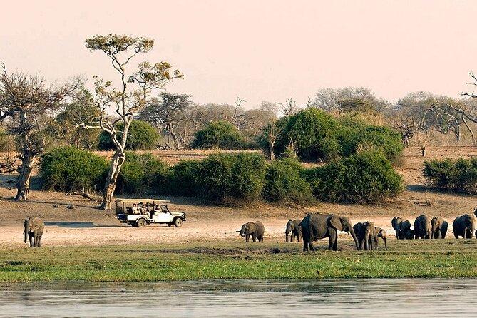 MAIS FOTOS, Chobe Full Day Safari (including transfers from Livingstone, Zambia to Botswana)