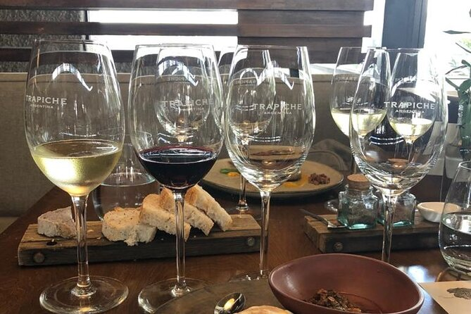 Wine tour with lunch from Mendoza, Mendoza, ARGENTINA
