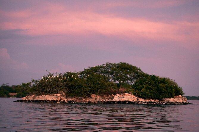 Bioluminescent Lagoon Boat Ride and Swim from Puerto Escondido, Puerto Escondido, MÉXICO