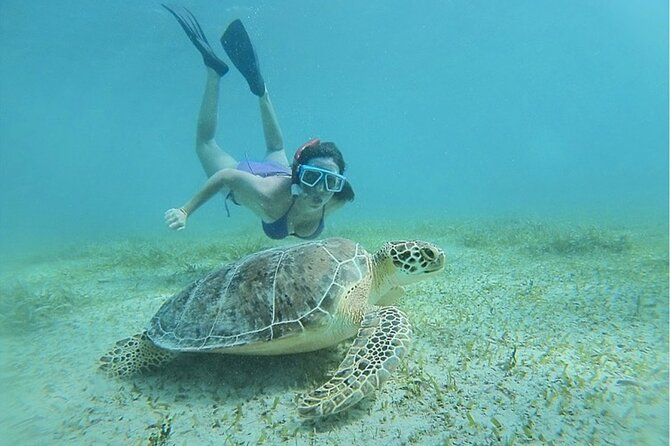 MORE PHOTOS, Snorkeling Tour to Vieques Island
