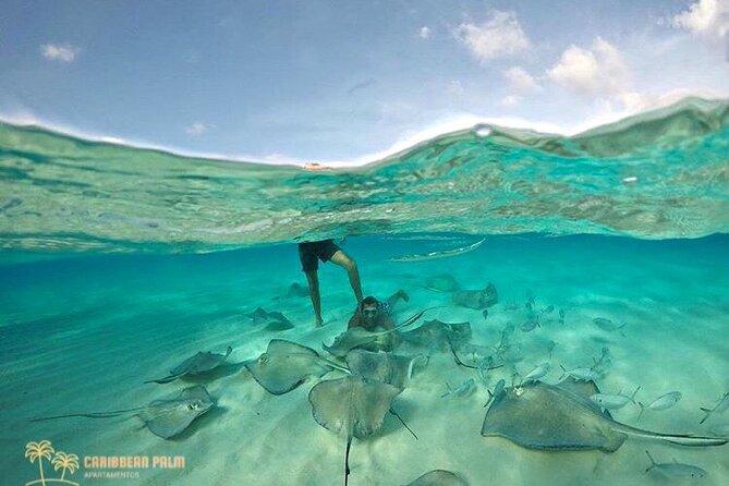 MÁS FOTOS, Tour Special Snorkel