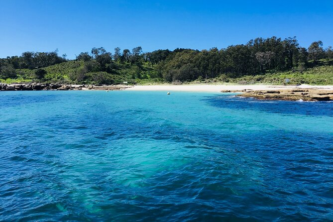Discover the wild beauty of Jervis Bay Marine Park and unravel its secrets that are only accessible by water on a 2-hour cruise from Huskisson. See the abundant wildlife in their natural habitat and explore the magic that is Jervis Bay.