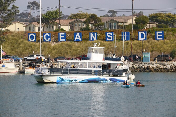MAIS FOTOS, Shared Two-Hour Whale Watching Tours from Oceanside, CA