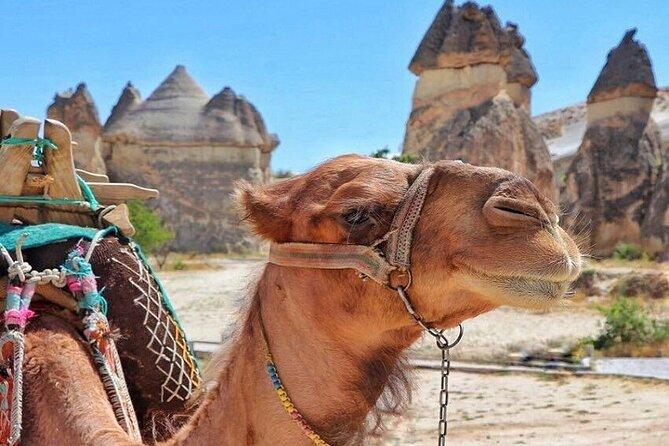 MORE PHOTOS, Cappadocia Delight : 2 Days Trip Including Camel Safari, and Balloon Ride Option