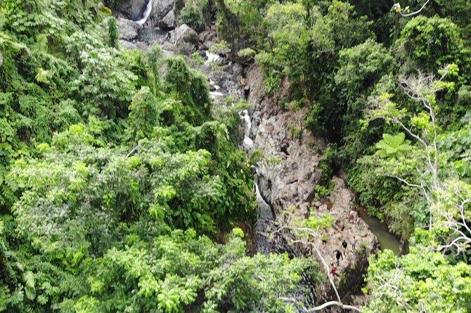 MÁS FOTOS, Rainforest River Adventure and Luquillo Beach Combo