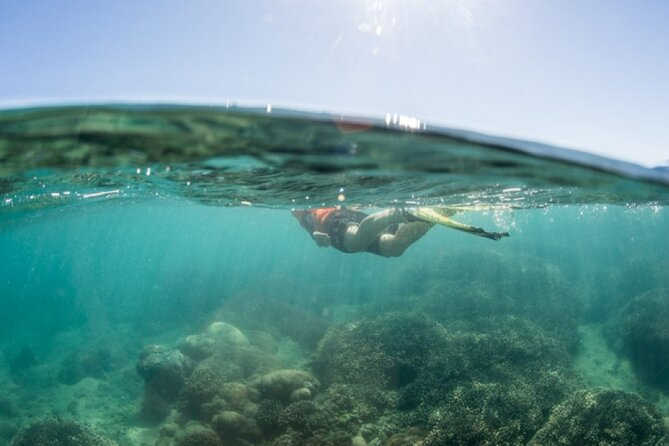 MÁS FOTOS, Great Sandy Marine Park, Turtle Discovery & Cultural Ecotour