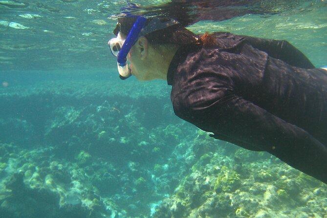 MÁS FOTOS, Tour de Snorkeling en San Andres