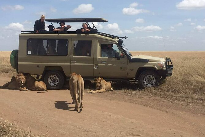 MÁS FOTOS, Full-Day Private Serengeti National Park Safari with Breakfast