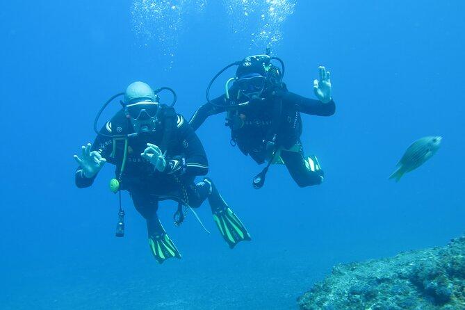 MORE PHOTOS, Sesimbra Dive Discovery