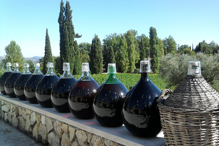 St. Jeannet Wine Tasting and St. Paul-de-Vence Private Tour from Nice, Niza, FRANCIA