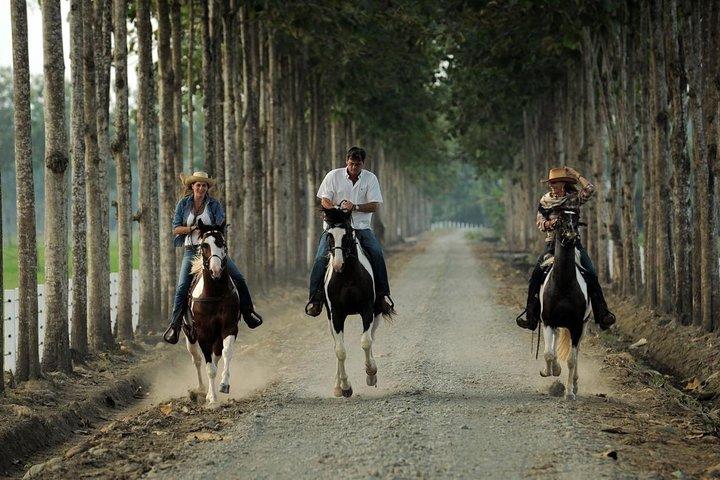 Day Trip to Hacienda La Danesa with Horseback Riding and Lunch, Quito, ECUADOR