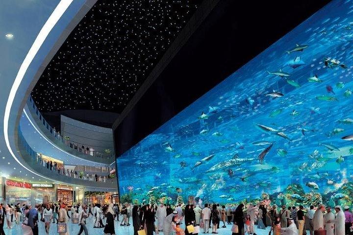 Dubai City tour from Abu Dhabi, Abu Dabi, United Arab Emirates