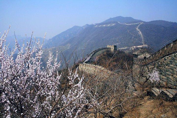 Zhengzhou Private Day Trip to Mutianyu Great Wall by Bullet Train, Zhengzhou, CHINA
