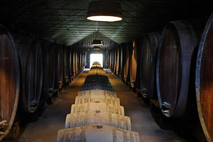 Lisbon - Private Wine Tasting Tour to the Setubal Wine Region, Lisboa, PORTUGAL