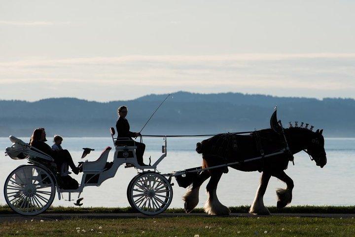Grand Horse-Drawn Carriage Tour, Isla de Vancouver, CANADA