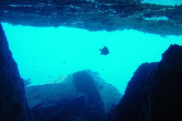 Full-Day Similans Scuba Diving from Phuket, Khao Lak, TAILANDIA