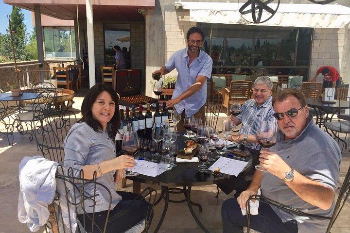Mendoza Wine Masterclass, Mendoza, ARGENTINA