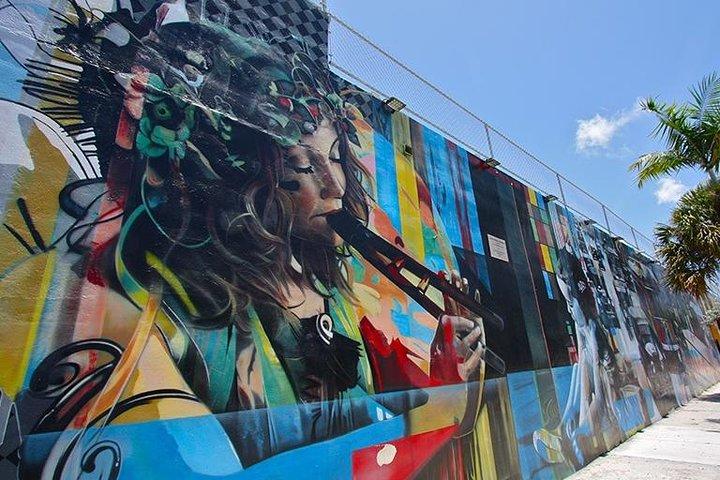 Melhor de Wynwood: arte de rua e excursão pela galeria, Miami, FL, ESTADOS UNIDOS