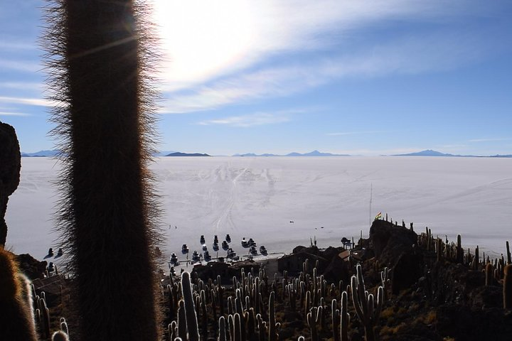 Tour to the Salar de Uyuni, with Lunch, Uyuni, BOLIVIA
