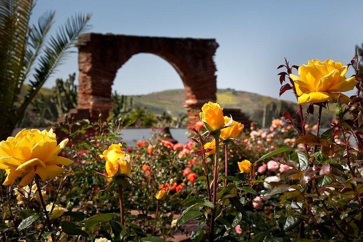 Behind-the-Scenes Tour of Mission San Luis Rey, Carlsbad, CA, ESTADOS UNIDOS