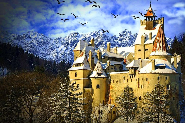 Private Day Trip from Bucharest to Dracula Castle in Transylvania, Bucarest, RUMANIA