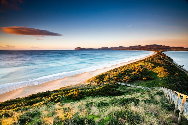 Full-Day Guided Bruny Island Tour from Hobart, Hobart, AUSTRALIA