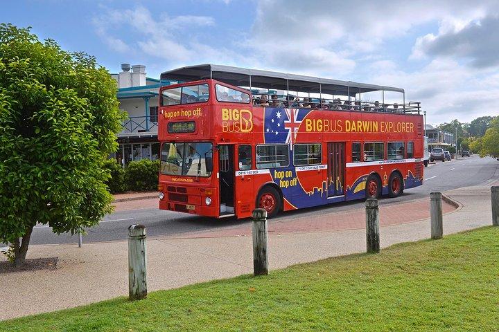 Darwin Shore Excursion: Hop-on Hop-off Bus Tour, Darwin, AUSTRALIA