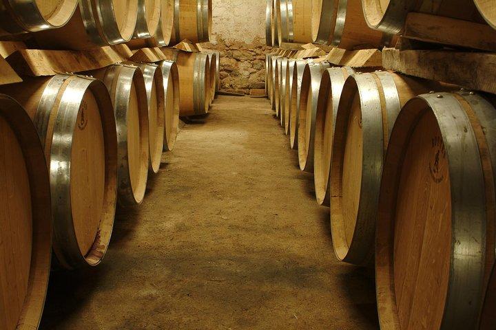 Marseille Shore Excursion - Private Full Day Wine Tour in Provence, Marsella, FRANCIA