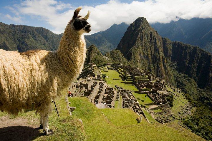 Machu Picchu Private Guided Tour from Aguas Calientes, Cusco, PERU