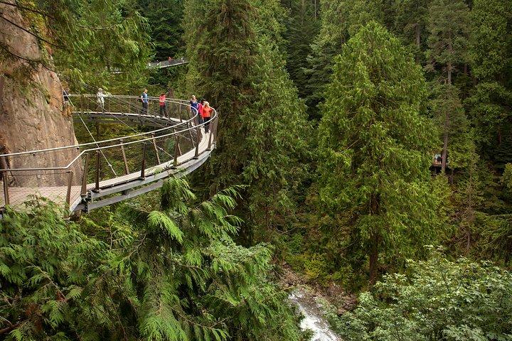 Passeio na Grouse Mountain e Ponte Suspensa de Capilano, Vancouver, CANADÁ