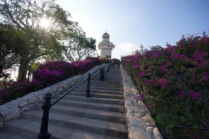 Recorrido privado por la ciudad de Guayaquil, incluido el Malecón, Las Peñas y el Parque Histórico, Guayaquil, ECUADOR