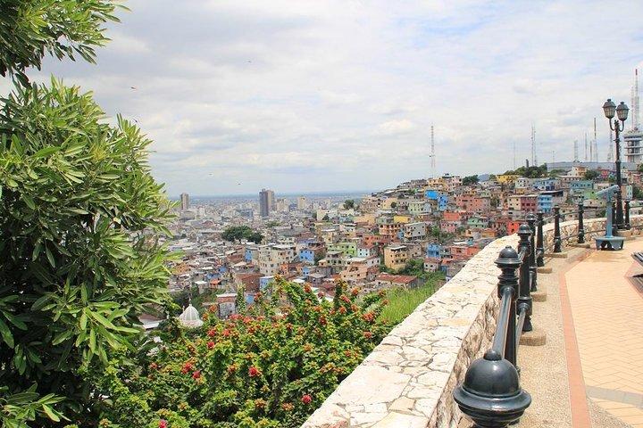 Recorrido privado de medio día por la ciudad de Guayaquil, incluido el Malecón y el barrio de Las Peñas, Guayaquil, ECUADOR