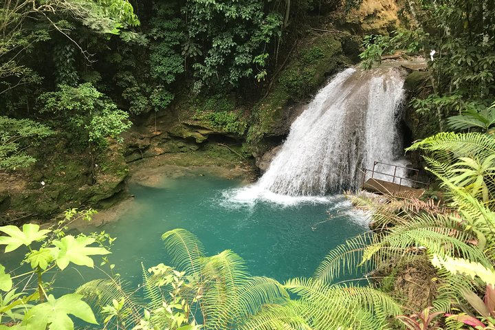 Combo Tour Dunn's River Falls and BlueTour from falmouth, Falmouth, JAMAICA